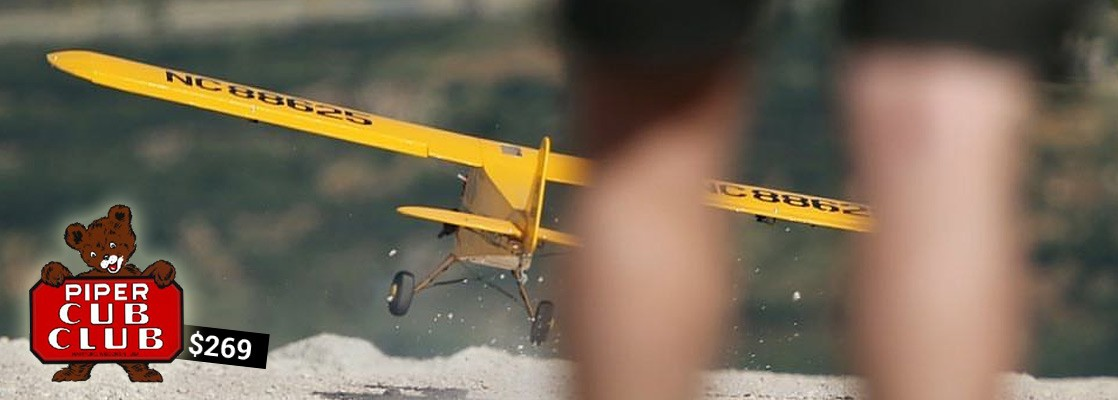 RC plane Piper Cub by Seagull Models