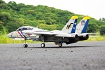 Freewing F-14 Tomcat Twin 80mm EDF PNP