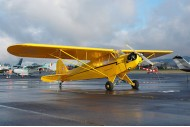 92 inch Scale Piper J3 30cc Gasoline Airplane Yellow ARF